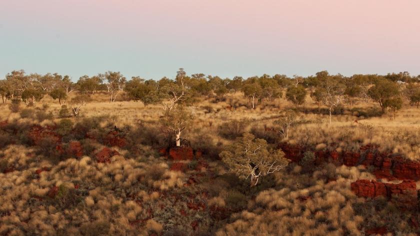 Savannah Karijini National Park Pilbara Western Australia