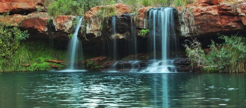 Fern Pool Jubura Karijini Pilbara Western Australia